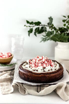 Chocolate Peppermint Cheesecake 2 277x416 - Chocolate Peppermint Cheesecake