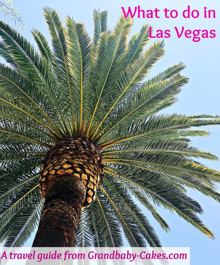 What to do in las vegas Grandbaby Cakes 850x1024 - What to do in Las Vegas!