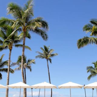 What to Do in Maui- All about the food, our Maui BabyMoon and Travel Diary