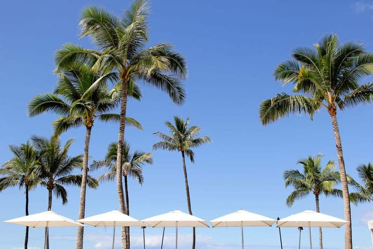 What to do in maui all about the food our maui babymoon and travel what to do in maui maui babymoon and travel diary grandbaby cakes solutioingenieria Images