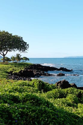 Best Things To Do In Maui Hawaii - Babymoon Ideas